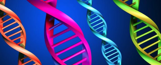 DNA Code for building a market leading business